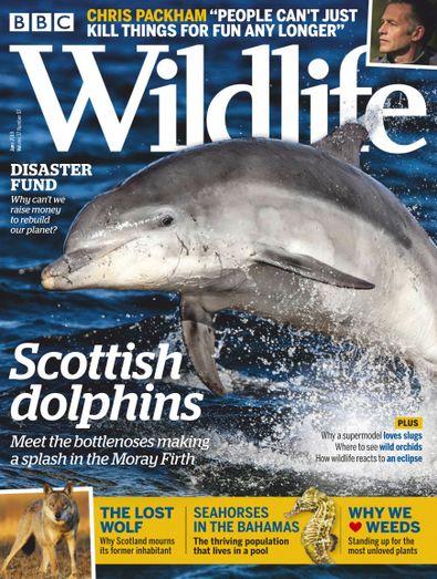 BBC Wildlife (UK) magazine cover