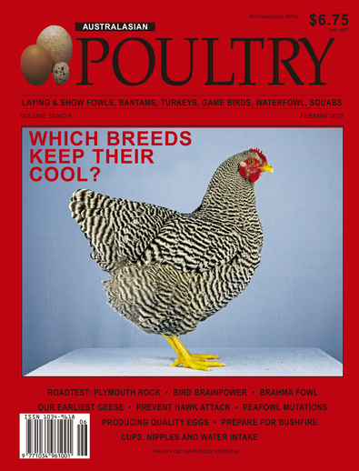 Australasian Poultry magazine cover