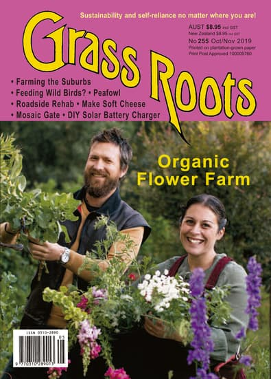 Grass Roots magazine cover