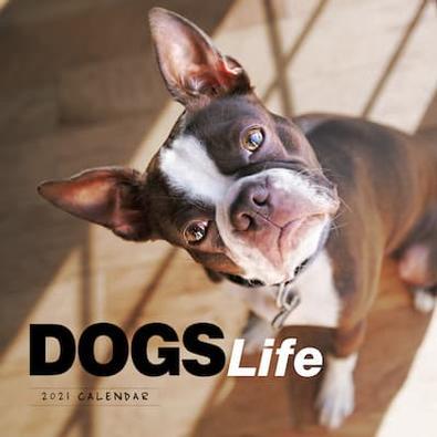 2021 Dogs Life Calendar cover