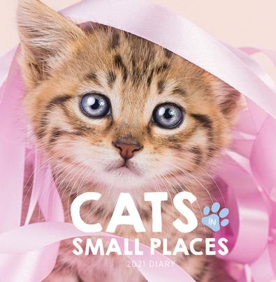 2021 Cats in Small Places Diary cover