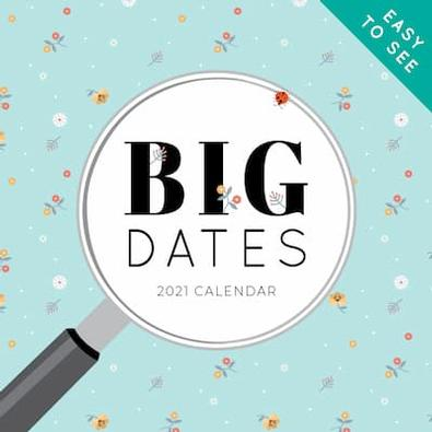 BIG DATES-Easy-to-See 2021 Calendar cover