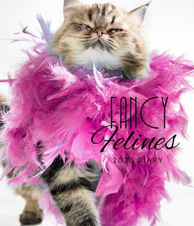 2020 Fancy Felines Diary cover