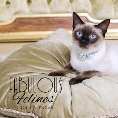 2021 Fabulous Felines Calendar cover