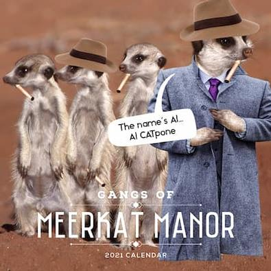 Gangs of Meerkat Manor 2021 Calendar cover