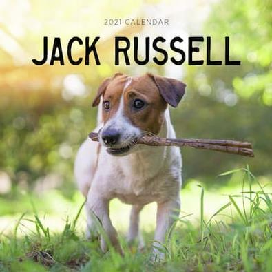2021 Jack Russell Calendar cover