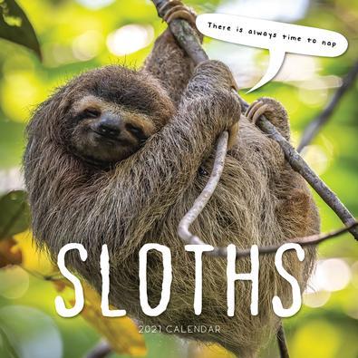 2021 Sloths Calendar cover