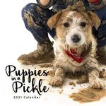 2021 Puppies in a Pickle Calendar thumbnail