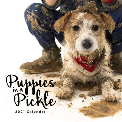 2021 Puppies in a Pickle Calendar cover
