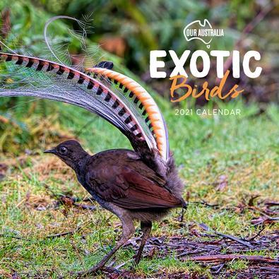 2021 Our Australia Exotic Birds Calendar cover