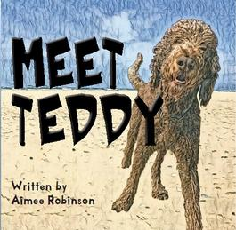 Meet Teddy cover