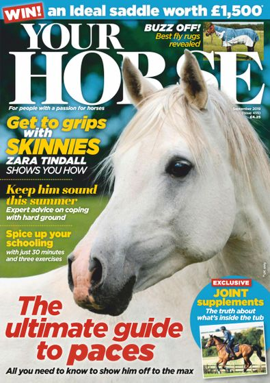 Your Horse digital cover