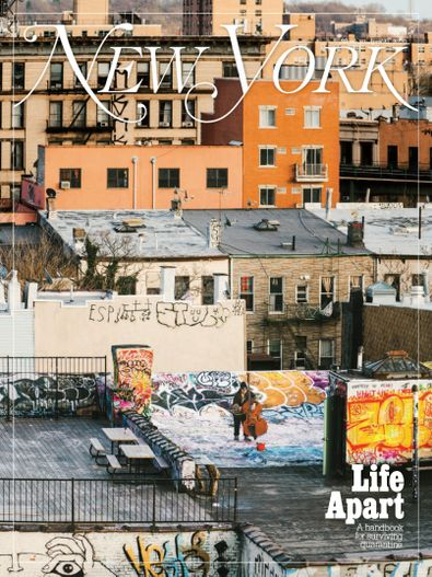 New York Magazine digital cover