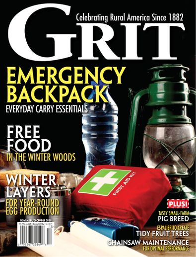 Grit digital cover