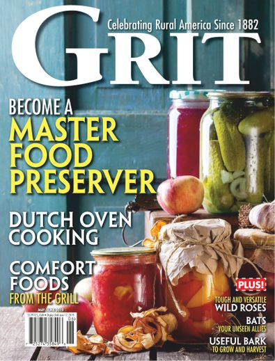 Grit digital cover