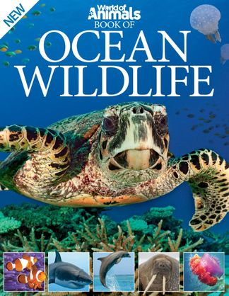 World of Animals Book of Ocean Wildlife digital cover