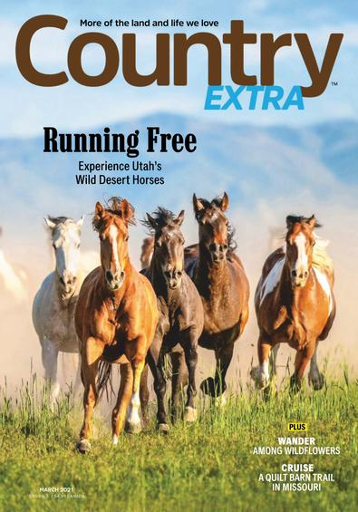 Country Extra digital cover