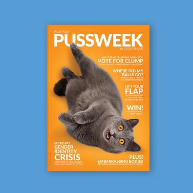 PUSSWEEK Issue Four magazine cover