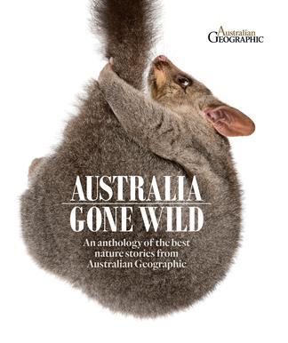 Australia Gone Wild cover