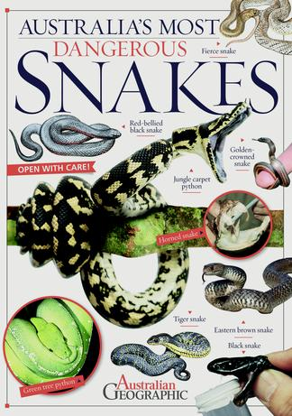 Australia's Most Dangerous Snakes Book cover