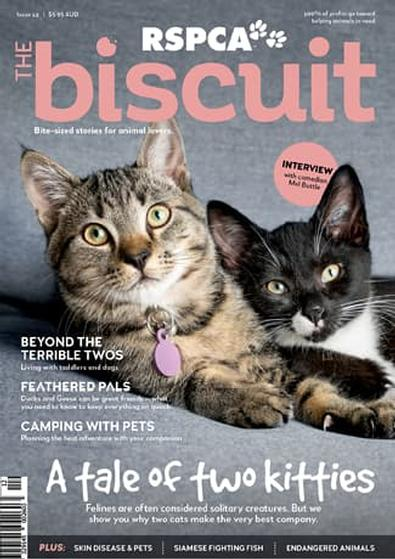 The Biscuit magazine cover