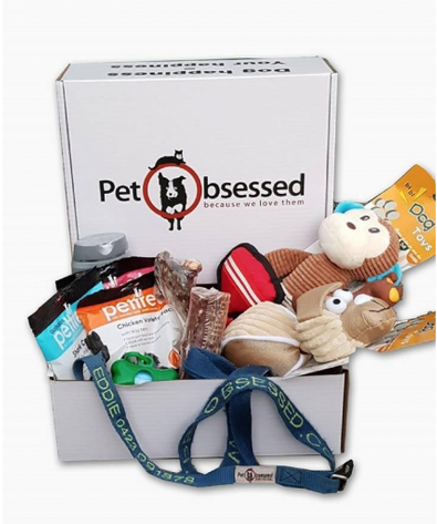 Pet Obsessed Large Dog Box cover