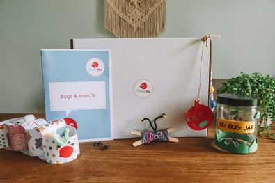 PeekyMe Bugs Craft Box cover