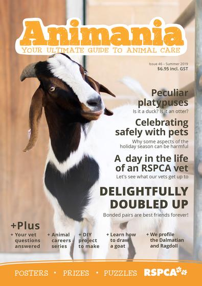 Animania Magazine cover